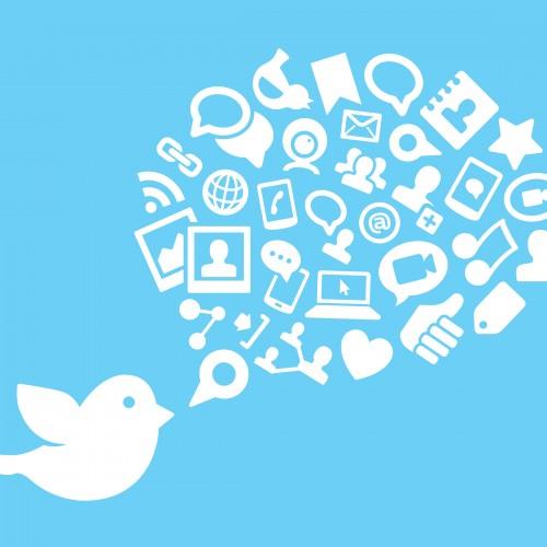 Twitter – instrument szybkiego reagowania w komunikacji marketingowej